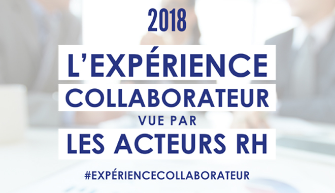 L'expérience collaborateur, combien de divisions ?