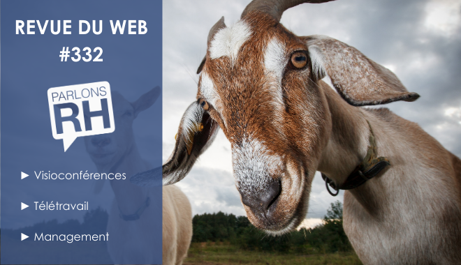 Revue du web #332 : visioconférences, télétravail et management