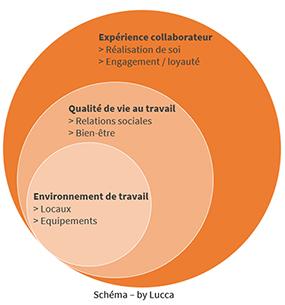 Schéma expérience collaborateur