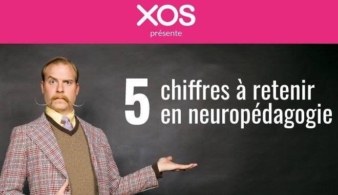 Formation : les chiffres clés de la neuropédagogie